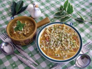 A. Chicken soup with lentils sprouts, vegetables, allspice and mother of herb leaves; B. pea and bean soup with vegetables and bay leaves.