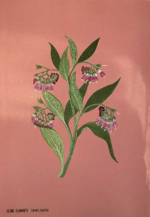 comfrey back cover