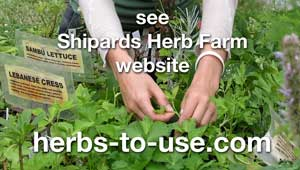come to Shipards Herb Farm website