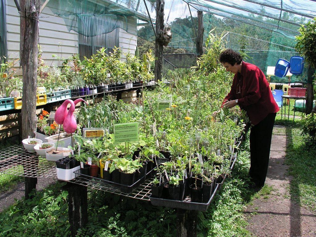 Isabell in her garden