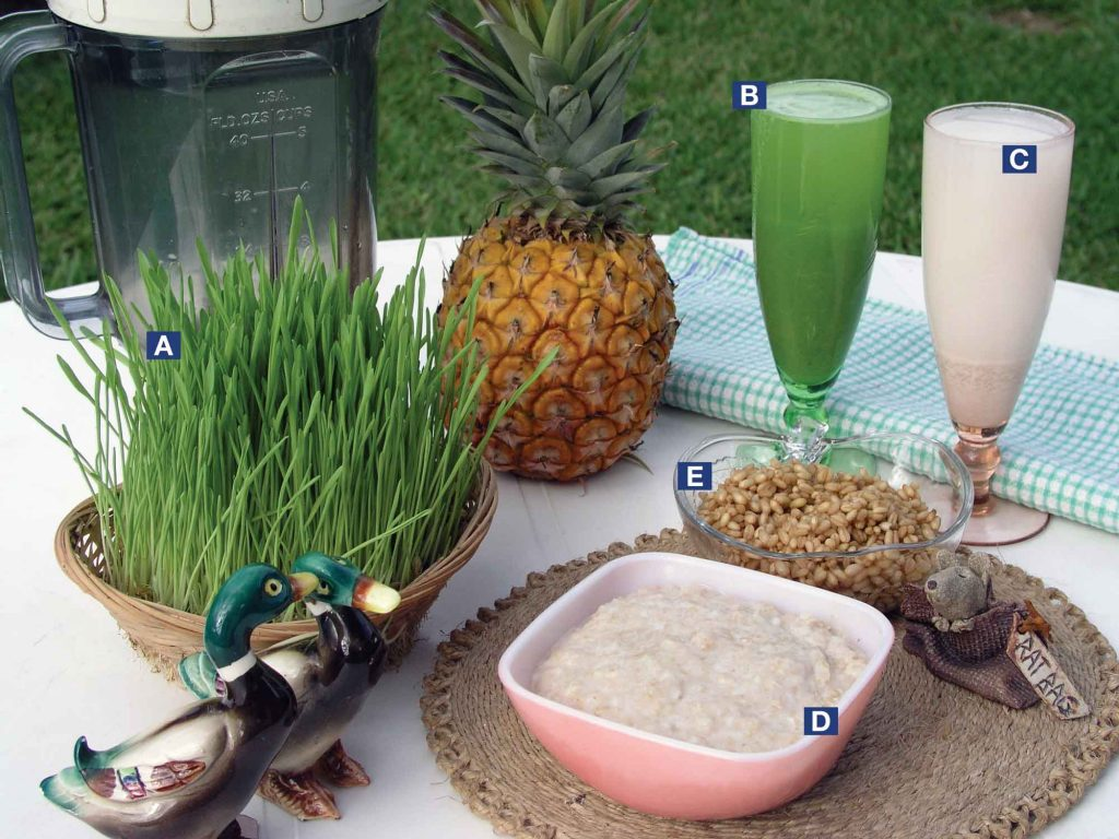 A. oats in basket B. oatgrass and pineapple smoothie C. oatmilk made with sprouts and flavoured with pineapple D. oat porridge made from strained fibre remaining after making oatmilk E. oats soaked, ready for sprouting.