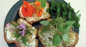 bread topped with honey kefir fenugreek sprouts and nasturtium flowers