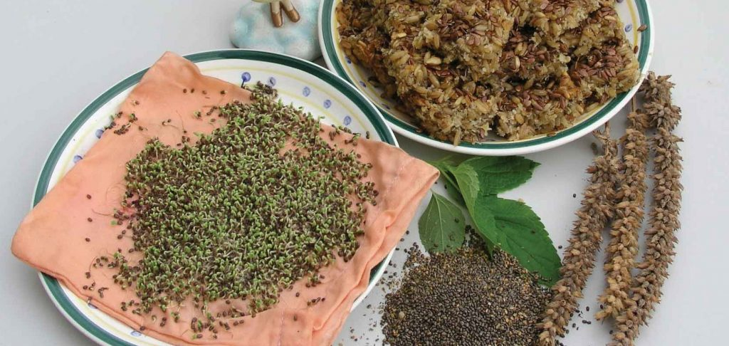 Boost your Brain with Chia