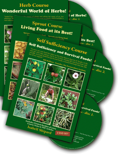 Herb, Sprout and Self Sufficiency – DVD Bundle